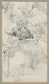 Richardson, Harry Linley, 1878-1947 :In Wellington Botanical Gardens. [1930s?]