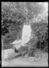 Unidentified woman and children, girl in pedal car and boy on a tricycle, probably Hastings district