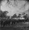 Mess queue at the New Zealand Advance Base Camp in Italy, World War II - Photograph taken by M D Elias