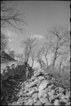 Pictorial view taken in front line areas of the Italian battlefront, World War II - Photograph taken by George Kaye