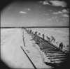 Laying a railway line in Libya during World War II - Photograph taken by M D Elias