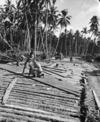 World War 2 soldiers of 3 NZ Div Eng building a bridge, Vella Lavella, Solomon Islands
