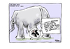 Hubbard, James, 1949- :Sri Lanka gifts elephant to NZ - news. 19 November 2013