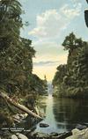 Watkinson, Arthur Edgar, 1882?-1918 :Upper drop scene, Wanganui River