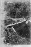 Creek and dam at Anawhata
