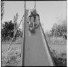 Maori children playing on a slide