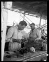 Jack Brabham checking equipment at the New Zealand Grand Prix, Ardmore, Auckland