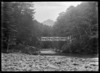 Bridge over a river flowing through beech forest, probably in the Otago region, circa 1926.