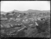 View of Port Chalmers township photographed from the quarry