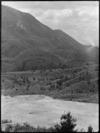 View of Orakei Korako thermal valley