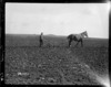 Ploughing at Sling Camp, World War I