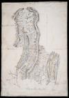 [Brodrick, Thomas Noel, 1855-1931?] :Plan of glaciers surrounding Mt. Cook [ms map]. [1889-90?]