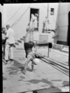 Diver doing handstand poolside, 1950 British Empire Games, Auckland