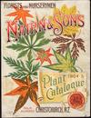 Nairn and Son's, florists and nurserymen, palm nursery, Christchurch, N.Z. :Plant catalogue [cover] 1904-05.
