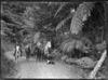Three men on horseback on the Karekare Road.