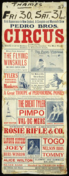 Pedro Bros Circus Limited :Thames, Fri 30 Sat. 31st Oct. First appearance in New Zealand. A complete mammoth show, coming in all its restless conquering grandeur, the most worthy combine in amusement annals. [Evening Post print - 48863. 1931].