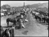 Scene at the Mount Cook Barracks, Wellington, during the 1913 waterfront strike, showing horses for the Mounted Special Police