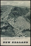 [New Zealand Government Tourist Department] :New Zealand. New Zealand lamb has been famous for its quality since the first shipment was made in 1882. Now, over sixteen million lambs a year are shipped to the United Kingdom. Printed in England [1940s?]