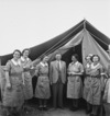 Elias, M D, fl 1943: New Zealand's Minister of Defence, Frederick Jones, meeting New Zealand nurses in Tunisia