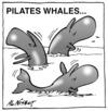 Nisbet, Alistair, 1958- :Pilates Whales... Christchurch Press. 5 August, 2002.