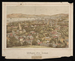 Artist unknown :Wellington, New Zealand, from Thorndon. Litho. at the N.Z. Graphic and Star Printing Works, from a photograph [1894]