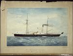 Nazer, Bowen Watson, b 1842 :The New Zealand Government P S Sturt... Jan 11, [18]67