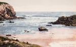 [Postcard]. Ocean Beach, Dunedin, a summer seascape / [photographer] Guy. [ca 1910].