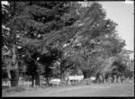 Lynnwood Homestead, Te Uku, near Raglan, 1910 - Photograph taken by Gilmour Brothers