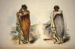 Angas, George French, 1822-1886 :Muriwhenua. Kahawai / George French Angas [delt]; J. W. Giles [lith].  Plate 51. 1847.