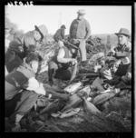 Men collecting fish at Te Kaha for a hangi