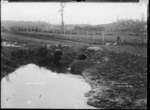 The pond, Te Mata, near Raglan, 1910 - Photograph taken by Gilmour Brothers