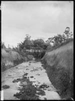 Waipipi Creek, Tuakau