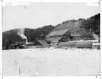 Progress gold mining battery, Crushington, West Coast
