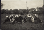 Wellington Girls College students performing Swedish drill.