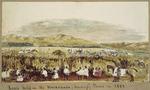 "Pearse, John  1808-1882 :Races held in the Wairarapa ""Waidrop"" Plains in 1852."
