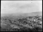 Streets and houses, Dunedin City