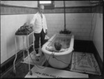 Administering therapeutic treatment to a patient in a slipper bath, Goverment Sanatorium and Baths, Rotorua