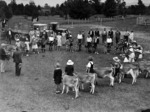 Children competing in the calf club championships and the mayor, Mr Osborne, about to present the trophies, Morrinsville