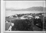 Bragge, James, 1833?-1908 :Part 1 of a 3 part panorama of Thorndon, Wellington