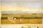 Harrison, Roger, fl 1894 :Hutt Valley [18]94.