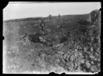 A mule bogged down in the mud on the Western Front