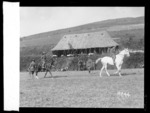 New Zealanders compete at the Anzac Horse Show, World War I
