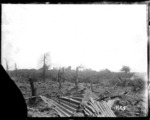 Messines battlefield, Belgium, during World War I, with shells bursting in the distance