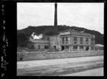 Wellington Woollen Manufacturing Company, Petone