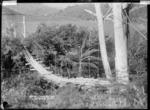 Oparau swing bridge, Waikato