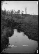 Takapaunui River, Te Mata, Raglan County, 1910 - Photograph taken by Gilmour Brothers
