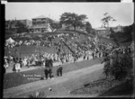 Crowd in Myers Park, Auckland
