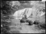 Coal Creek Falls, near Greymouth
