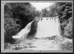 Aniwaniwa Falls, Lake Waikaremoana - Photograph taken by John William McDougall