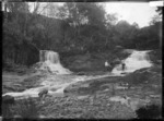 The falls, Matakana